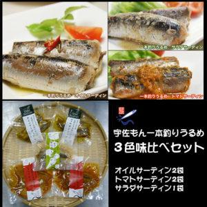 一本釣りうるめいわしセット(1日干、炙りたたき、オイルサーディン、ぶっかけ漬け丼)(冷凍)