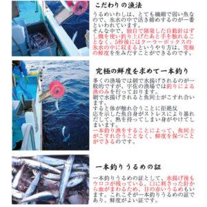 一本釣りうるめいわしセット(1日干、炙りたたき、オイルサーディン、ぶっかけ漬け丼)(冷凍)_03