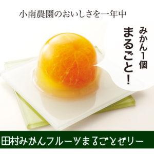みかんまるごと1個入りゼリー 田村みかんフルーツまるごとゼリーセット 94g×12個