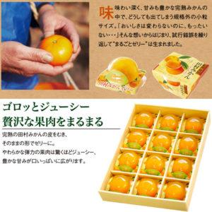 みかんまるごと1個入りゼリー 田村みかんフルーツまるごとゼリーセット 94g×12個_02